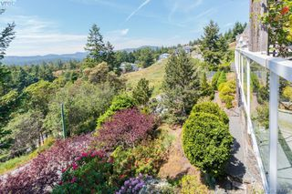 Photo 18: 3496 Maureen Terrace in VICTORIA: La Olympic View Single Family Detached for sale (Langford)  : MLS®# 378704