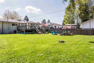 Photo 19: 22043 SELKIRK Avenue in Maple Ridge: West Central House for sale : MLS®# R2262384