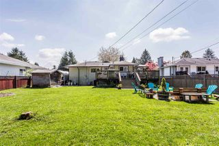 Photo 20: 22043 SELKIRK Avenue in Maple Ridge: West Central House for sale : MLS®# R2262384