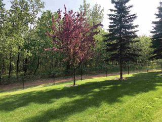 Photo 17: 113 592 HOOKE Road in Edmonton: Zone 35 Condo for sale : MLS®# E4149067