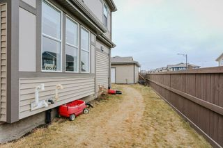 Photo 30: 3851 POWELL Wynd in Edmonton: Zone 55 House for sale : MLS®# E4151069