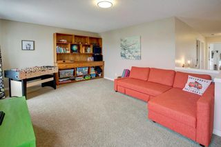 Photo 18: 202 COPPERPOND Bay SE in Calgary: Copperfield Detached for sale : MLS®# C4294623