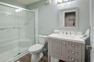 Photo 26: 202 COPPERPOND Bay SE in Calgary: Copperfield Detached for sale : MLS®# C4294623