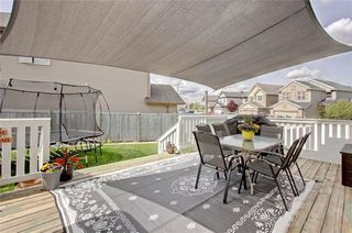 Photo 29: 202 COPPERPOND Bay SE in Calgary: Copperfield Detached for sale : MLS®# C4294623