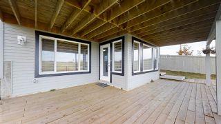 Photo 38: 2939 11 Street in Edmonton: Zone 30 House for sale : MLS®# E4216091
