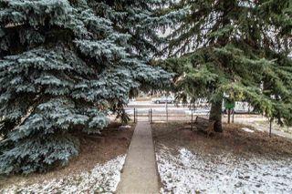 Photo 39: 11924 44 Street in Edmonton: Zone 23 House for sale : MLS®# E4219175