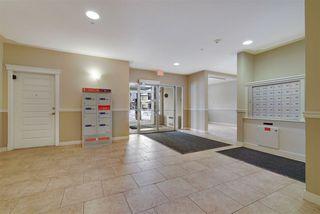 Photo 20: 101 10530 56 Avenue in Edmonton: Zone 15 Condo for sale : MLS®# E4221344