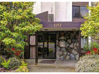 Photo 20: 305 1157 Fairfield Rd in VICTORIA: Vi Fairfield West Condo for sale (Victoria)  : MLS®# 684226