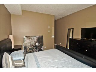 Photo 10: 103 320 12 Avenue NE in Calgary: Crescent Heights Condo for sale : MLS®# C3644558