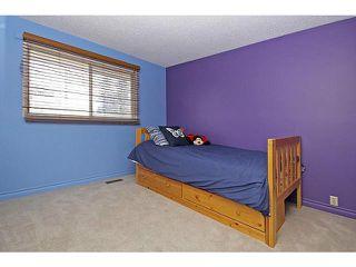 Photo 16: 116 LAKE PLACID Road SE in Calgary: Lk Bonavista Estates Residential Detached Single Family for sale : MLS®# C3654638