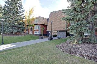 Photo 1: 312 50 Avenue SW in Calgary: Apartment for sale : MLS®# C3641138