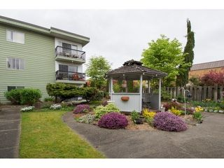 "Photo 5: 106A 8635 120 Street in Delta: Annieville Condo for sale in ""DELTA CEDAR"" (N. Delta)  : MLS®# R2166139"
