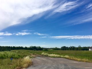 Photo 1: 490 50450 Range Road 234: Rural Leduc County Rural Land/Vacant Lot for sale : MLS®# E4075067