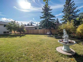 Photo 5: 10812 42A AV NW NW in Edmonton: Zone 16 House for sale : MLS®# E4083080