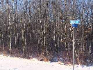 Photo 5:  in Wainwright MD: Silver Willow Estates Land Only for sale (MD of Wainwright)  : MLS®# 65830