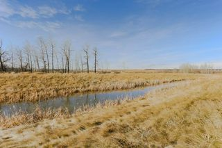 Photo 29: : Rural Sturgeon County House for sale : MLS®# E4135527
