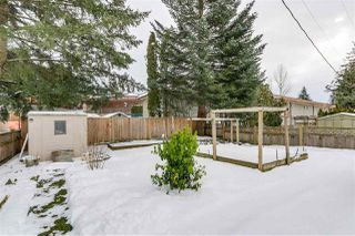 """Photo 13: 11 31313 LIVINGSTONE Avenue in Abbotsford: Abbotsford West Manufactured Home for sale in """"Paradise"""" : MLS®# R2341649"""