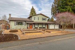 Main Photo: 18947 119B Avenue in Pitt Meadows: Central Meadows House for sale : MLS®# R2348861