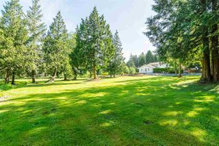 "Photo 20: 41650 BOWMAN Road in Yarrow: Majuba Hill House for sale in ""MAJUBA HILL"" : MLS®# R2353801"