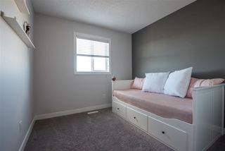 Photo 17: 8204 224 Street in Edmonton: Zone 58 House for sale : MLS®# E4151535