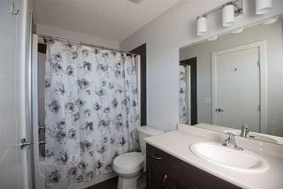 Photo 15: 8204 224 Street in Edmonton: Zone 58 House for sale : MLS®# E4151535