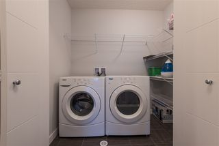 Photo 19: 8204 224 Street in Edmonton: Zone 58 House for sale : MLS®# E4151535