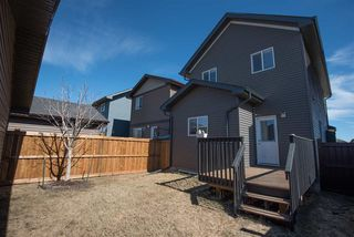 Photo 21: 8204 224 Street in Edmonton: Zone 58 House for sale : MLS®# E4151535