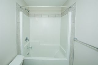Photo 21: 8119 226 Street in Edmonton: Zone 58 House for sale : MLS®# E4153306
