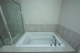 Photo 16: 8119 226 Street in Edmonton: Zone 58 House for sale : MLS®# E4153306