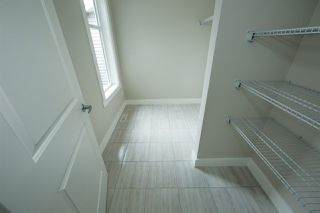Photo 14: 8119 226 Street in Edmonton: Zone 58 House for sale : MLS®# E4153306