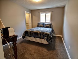 Photo 16: 607 Albany Way in Edmonton: Zone 27 House for sale : MLS®# E4154109
