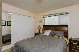 Photo 15: 6403 15 Avenue in Edmonton: Zone 29 House for sale : MLS®# E4160350