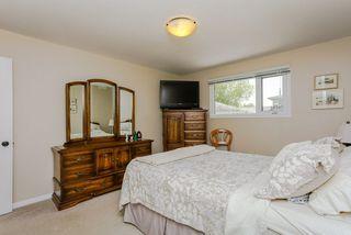 Photo 11: 6403 15 Avenue in Edmonton: Zone 29 House for sale : MLS®# E4160350