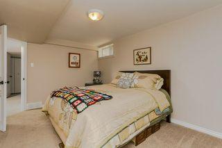 Photo 19: 6403 15 Avenue in Edmonton: Zone 29 House for sale : MLS®# E4160350