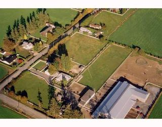 Photo 9: 6438 60TH Ave in Ladner: East Delta Home for sale ()  : MLS®# V750398