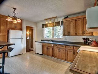 Photo 16: 5724 90 Avenue in Edmonton: Zone 18 House for sale : MLS®# E4166122
