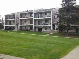 Main Photo: 3 3807 76 Street in Edmonton: Zone 29 Condo for sale : MLS®# E4172849