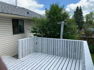 Photo 27: 221 MARQUIS Place SE: Airdrie Detached for sale : MLS®# A1009487