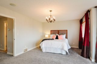 Photo 36: 20 NICOLA Road: St. Albert House for sale : MLS®# E4207431