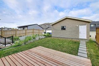 Photo 37: 43 NOLANLAKE Point NW in Calgary: Nolan Hill Detached for sale : MLS®# A1019401