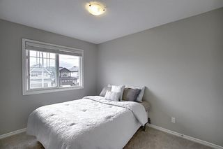 Photo 27: 43 NOLANLAKE Point NW in Calgary: Nolan Hill Detached for sale : MLS®# A1019401