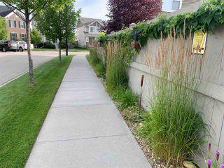 Photo 34: 719 DECOTEAU Way in Edmonton: Zone 27 House for sale : MLS®# E4209595