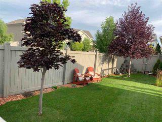 Photo 38: 719 DECOTEAU Way in Edmonton: Zone 27 House for sale : MLS®# E4209595