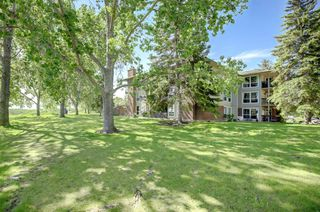 Photo 27: 134 860 MIDRIDGE Drive SE in Calgary: Midnapore Apartment for sale : MLS®# A1034237