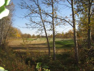 Photo 9: 0 Cameron Trail in RMOFOCHRERIVER: Manitoba Other Residential for sale : MLS®# 1120334