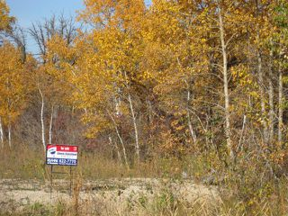 Photo 11: 0 Cameron Trail in RMOFOCHRERIVER: Manitoba Other Residential for sale : MLS®# 1120334