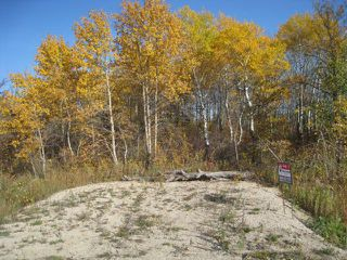 Photo 10: 0 Cameron Trail in RMOFOCHRERIVER: Manitoba Other Residential for sale : MLS®# 1120334