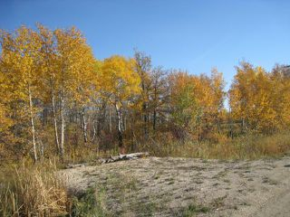 Photo 6: 0 Cameron Trail in RMOFOCHRERIVER: Manitoba Other Residential for sale : MLS®# 1120334