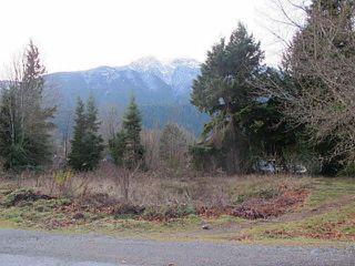 Photo 2: 1276 DEPOT Road in Squamish: Brackendale Home for sale : MLS®# V1037863