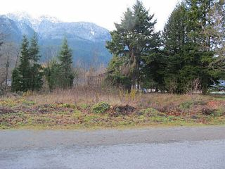 Photo 1: 1276 DEPOT Road in Squamish: Brackendale Land for sale : MLS®# V1037863
